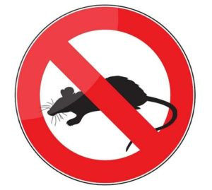 deratisation tunisie, société anti-rat et souris